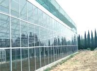 玻璃大棚造价,大棚生态饭店,大棚搭建公司,辉腾温室