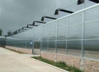 钢结构玻璃大棚,新型阳光板温室,蔬菜大棚厂,辉腾温室