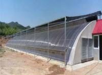 养殖大棚加工定做 大棚温室建造 养殖大棚骨架安装 旭航温室