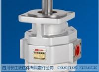 四川长江液压件齿轮泵CBGFa2032