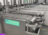 小型自动干豆腐机 港北区自动干豆腐机 中科圣创新式豆腐皮机