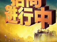 22年金荣行业新走向,正规化,股权基金项目招商