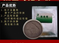 黑曲霉孢子粉动物饲料发酵菌种肥料发酵菌种秸秆腐熟剂