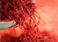 藏红花提取物西班牙进口藏花醛3%|藏红花素7.5%
