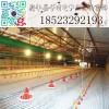 料线 养殖设备 养殖自动喂料系统 肉鸡料线 蛋鸡料线