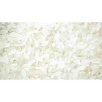 求购高粱玉米大米碎米小麦糯米淀粉豆类等