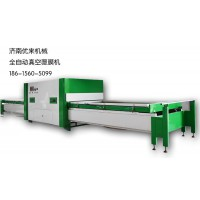 湖北省枝江市全自动真空覆膜机,品质保证