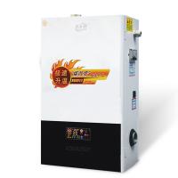 岚帝尔 智能 多型号 节能环保 电采暖炉