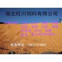 旺川饲料求购玉米棉粕高粱大豆大麦荞麦
