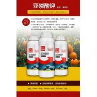 亚磷酸钾诚招代理补磷补钾柑橘溃疡病克星增甜增强抗病力
