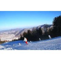 滑雪�鼋ㄅ对O �O�方案 港△�A有��力