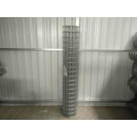 安平电焊网厂家热销小方格网玉米网