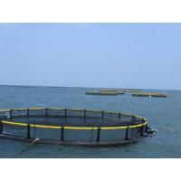 厂家供应深海养鱼网箱 养鱼网箱规格 养鱼网箱厂家