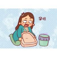 懷孕后頻繁孕吐竟會產生如此嚴重的不良后果!該怎么緩解?