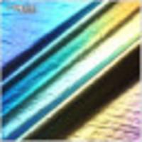 布匯廣德隆紡織漸變水彩暈染變色彩虹條小豹紋燙金面料運動服