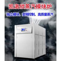 大型工业燃气锅炉低氮改造厂家节能蒸汽模块炉