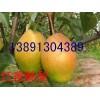陕西红香酥梨价格陕西库尔香梨批发陕西冷库红香酥梨产地基地