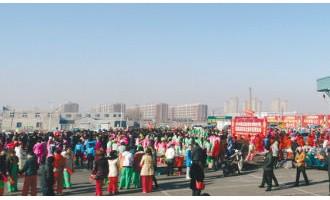 首届法库东北亚年货博览会盛装启幕