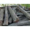 长期供应苦楝木香椿木槐木原木