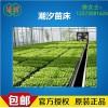 蚌埠批發溫室移動苗床 固定苗床 花卉苗床