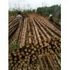 代理杉木杆|实惠的杉木杆销售