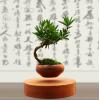 磁悬浮盆栽摆件   深圳市佰泓电子有限公司