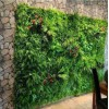高端仿真植物墙 天津实惠的仿真植物墙上哪买