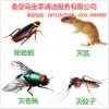 抚宁除四害公司_一级的灭苍蝇提供
